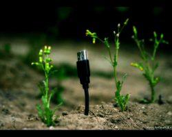 unique usb+weeds